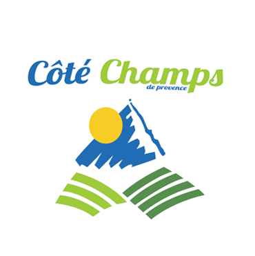 louison saint chamond